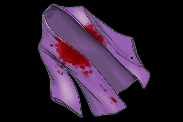 File:Bloody robe.png