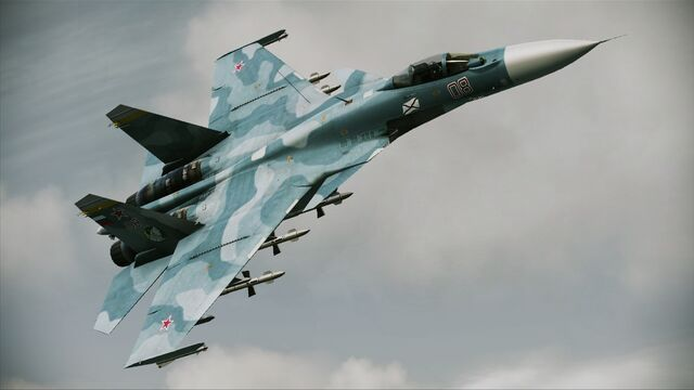 File:ACAH Su-33D Profile.jpg