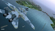 F-14D ACX Flyby 5