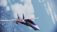 F-14A AC Skin01 Flyby 1