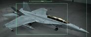 EA-18G OMDF color Hangar