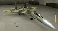 Su-37 Special color hangar
