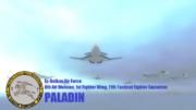 Paladin Squadron