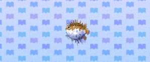 File:Pufferfish.jpg