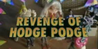 The Revenge of Hodge Podge