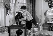 Af pugsleys room chimp
