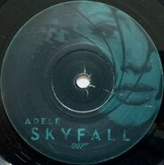 Skyfall Vinyl 3