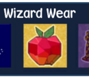 Nearly Ultimate Wizard Wear