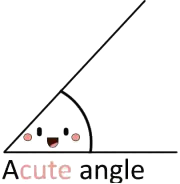File:Acute Angle.png