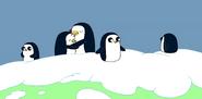 PenguinsinIce