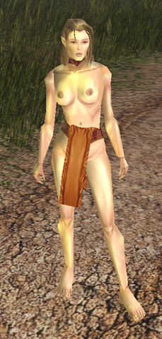 File:Slave Outfit view.png