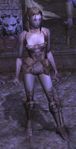 File:Princess Amraphenneset's Platemail view.png