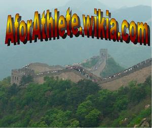 Great Wall-logo