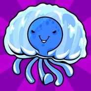 Pet balls jellyfish hi