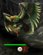 Forest Condor