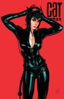 282262-49835-catwoman
