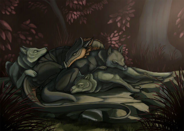 File:Funny shaped wolf by garliceyes-d5wrqh4.jpg