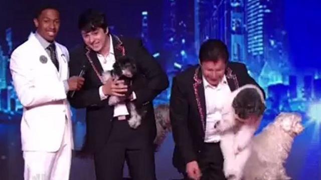 Olate Dogs, Top 48 Q4 ~ America's Got Talent 2012
