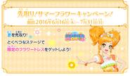 01 summer flower campaign