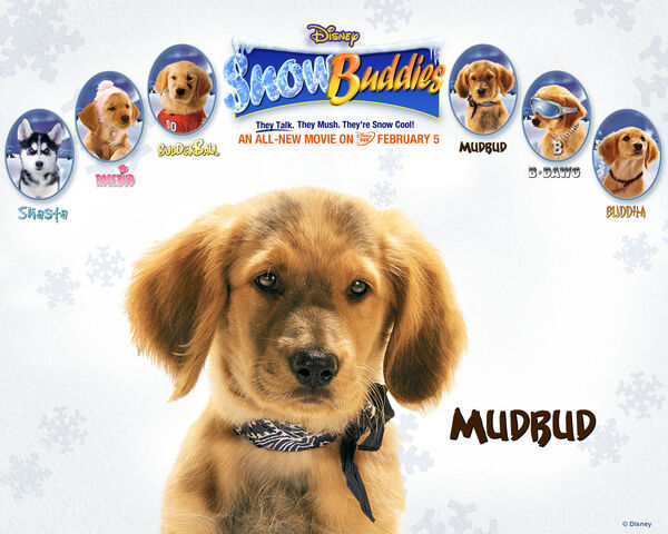 File:Snow buddies mudbud.jpg