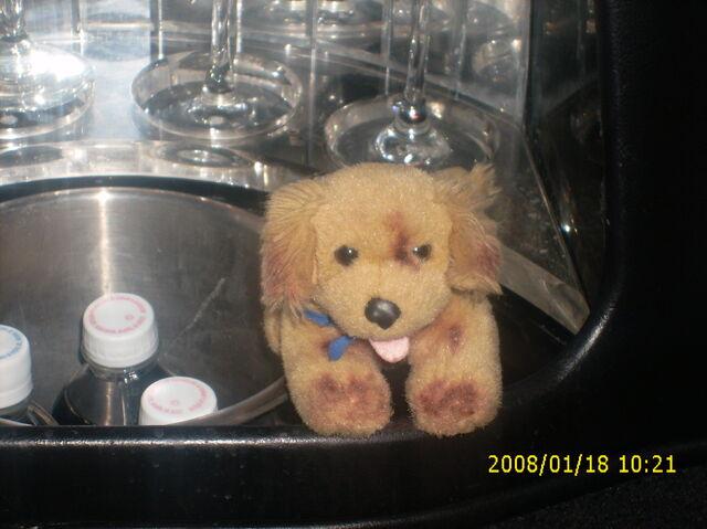 File:Air buddies Fan club A trip to Taylor Swift 006.jpg