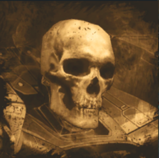 Ancient skull