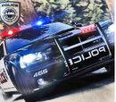 AJM 's Seacrest County Law Enforcement