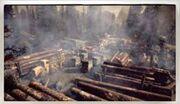 Biltmore Logging Camps