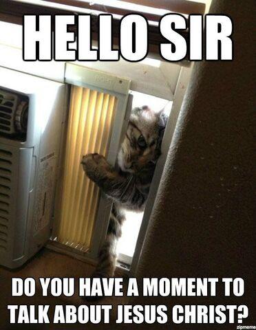 File:Jehovah-witness-cat.jpg
