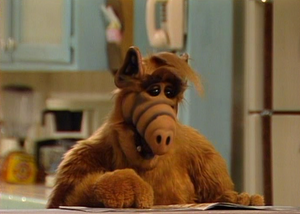 ALF selecting cheese log