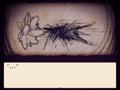 Thumbnail for version as of 04:44, November 24, 2014