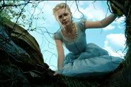Alice and Hole
