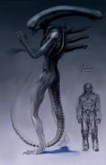 Ultramorph-Engineer height 2
