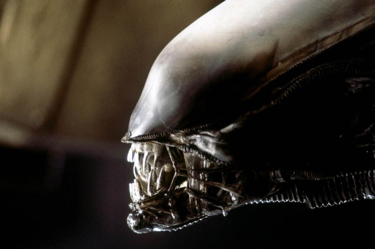 File:The Alien close-up.jpg