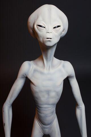 File:Roswell Alien 2290.jpg