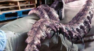 File:Mist tentacles.jpg