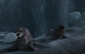 Thumbnail for version as of 01:51, July 8, 2015