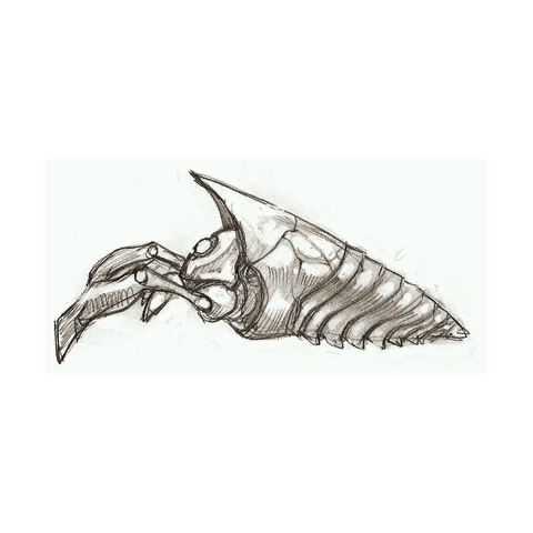 Possible concept art of a Brizgee.