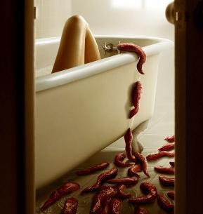 File:Slither Slugs.jpg