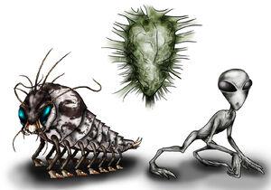 Animorphs Races Skrit Na by Monster Man 08