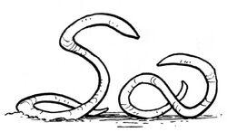 Ylesian White Worms