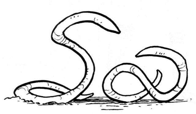 File:Ylesian White Worms.jpg