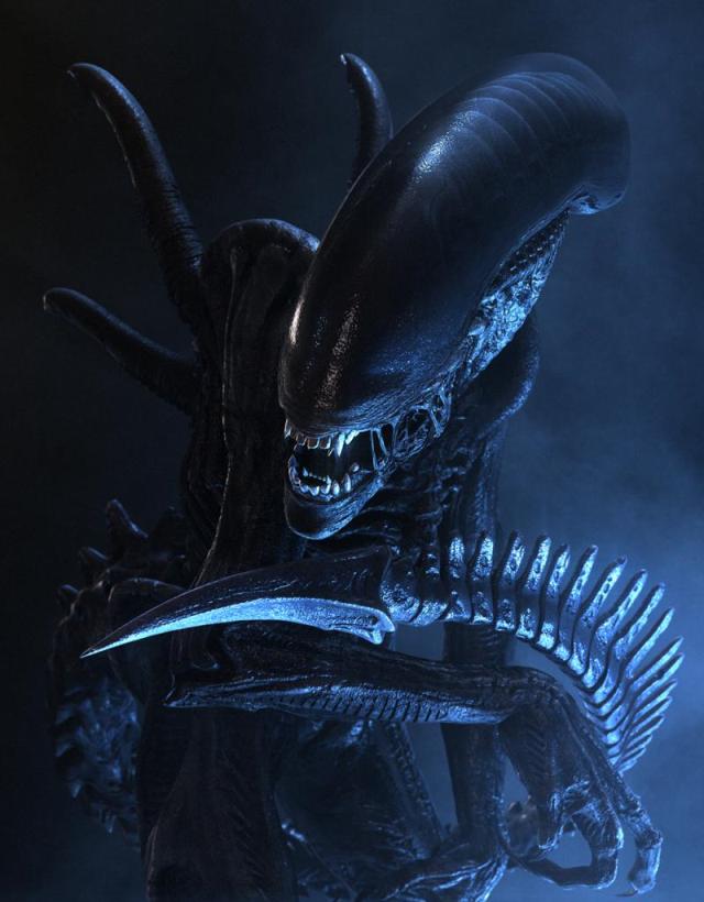 CategoryXenomorph Variants Alien Species FANDOM Powered By Wikia