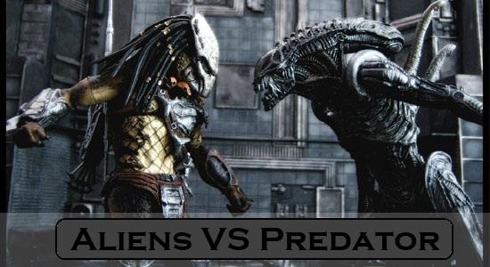 Alien Vs Predator  Movie Wiki