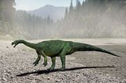 Aardonyx NT
