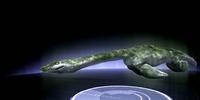 America's Loch Ness Monster