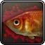 Fish Achievement Icon