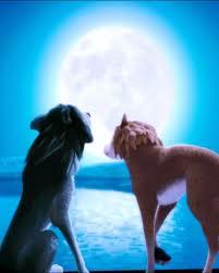 File:Moonlight romance.jpg