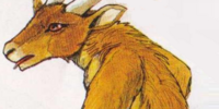 Gory Goat