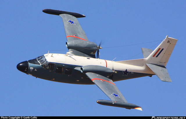 File:ZU-DFI-South-African-Air-Force-Piaggio-P-166 PlanespottersNet 150683.jpg